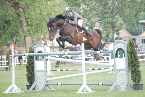 http://jumpingclinic.hupont.hu/9/galeria